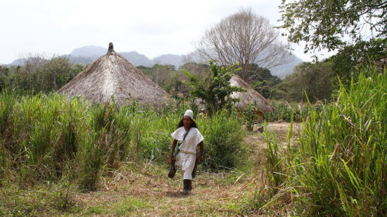 Arhuaco-livelihoods
